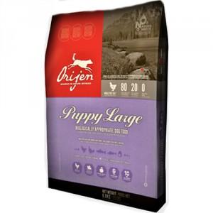 Orijen Puppy Large 6 kg